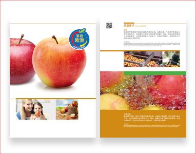 Jablka-promocje-2-11